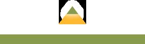 St. George logo